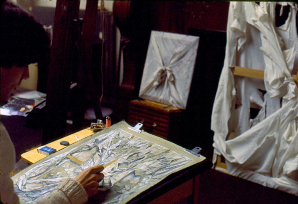 salvador drawing toile