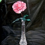 7 my pink rose