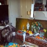 5. painting stillife 4